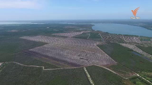 กลุ่มทุนบุกรุกป่าพรุเกาะนางคำ จ.พัทลุง ซ้ำอีกเสียหายเกือบ 900 ไร่