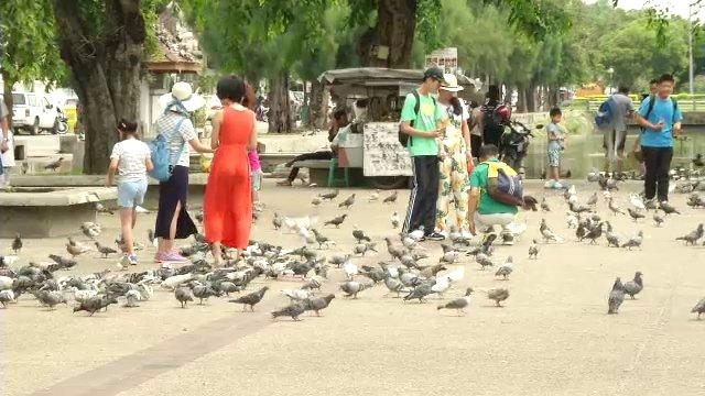 นักท่องเที่ยวจีน จ.เชียงใหม่-เชียงราย ลดลงกว่าครึ่ง