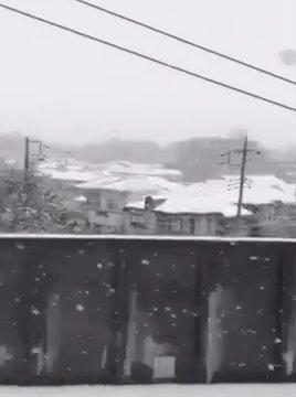หิมะตกที่โตเกียวในเดือนพฤศจิกายน ครั้งแรกในรอบ 54 ปี