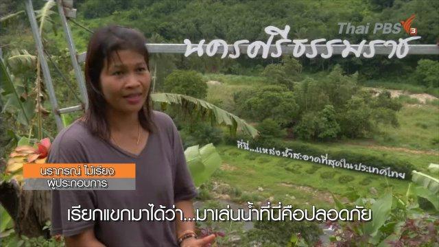 """เขาหลวง จ.นครศรีธรรมราช """"แหล่งน้ำสะอาดที่สุดของไทย"""""""