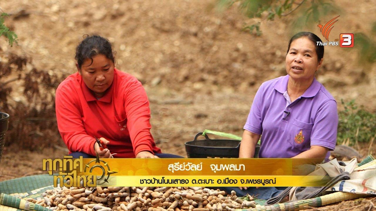 ทุกทิศทั่วไทย - อาชีพทั่วไทย : ชาวสวนเพชรบูรณ์แปรรูปมะขามสร้างรายได้เพิ่ม