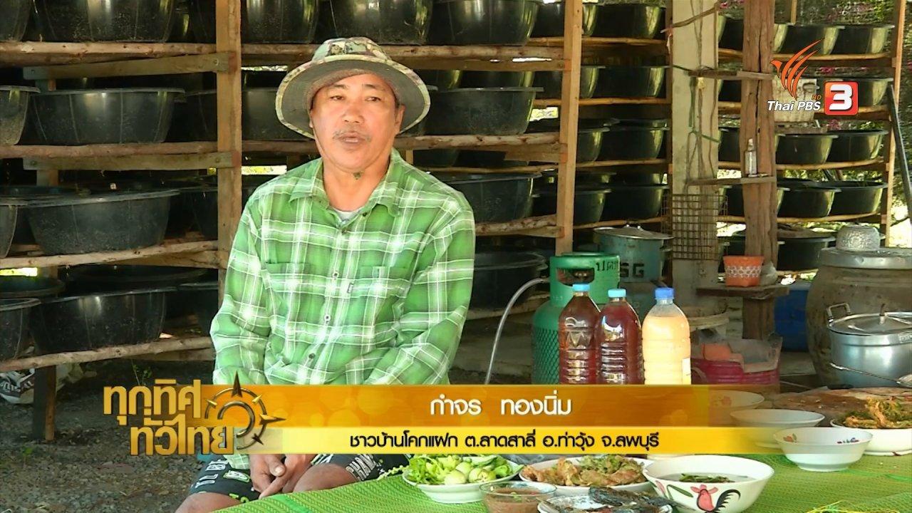 ทุกทิศทั่วไทย - ผลิตน้ำจาวปลวกใช้ในนาข้าวแทนสารเคมี