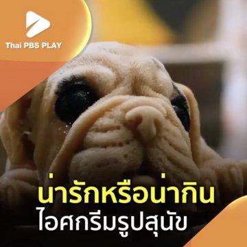 น่ารักหรือน่ากิน ไอศกรีมรูปสุนัข