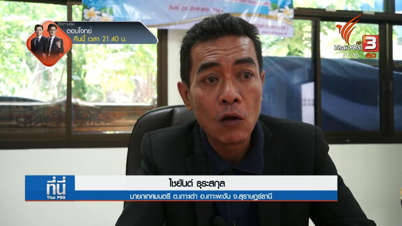 ที่นี่ Thai PBS - สอบสวนเพิ่มเติมที่เกาะเต่า