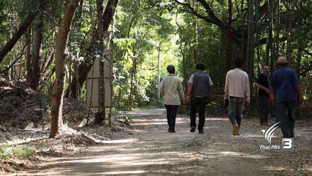 ทีวีชุมชน - เด็กรักป่า วิถีพอเพียงของคนแสลงพันธ์