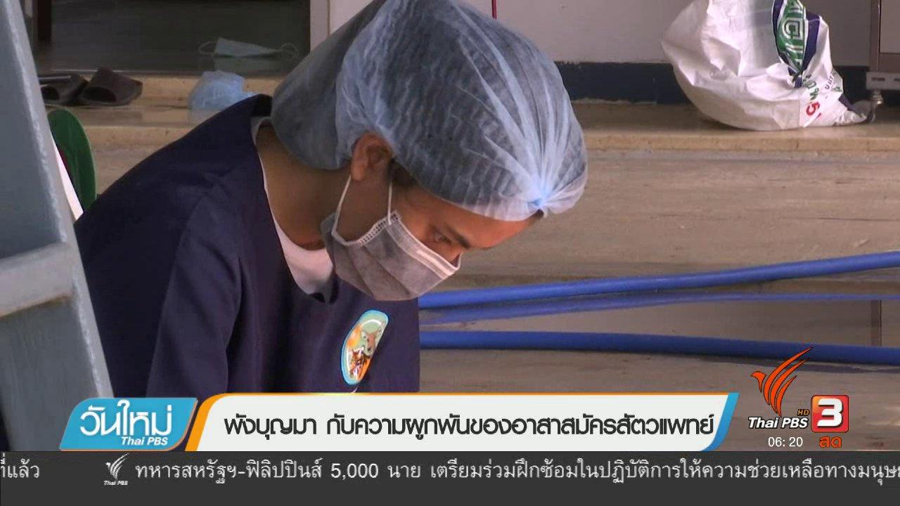 วันใหม่  ไทยพีบีเอส - พังบุญมา กับความผูกพันของอาสาสมัครสัตวแพทย์