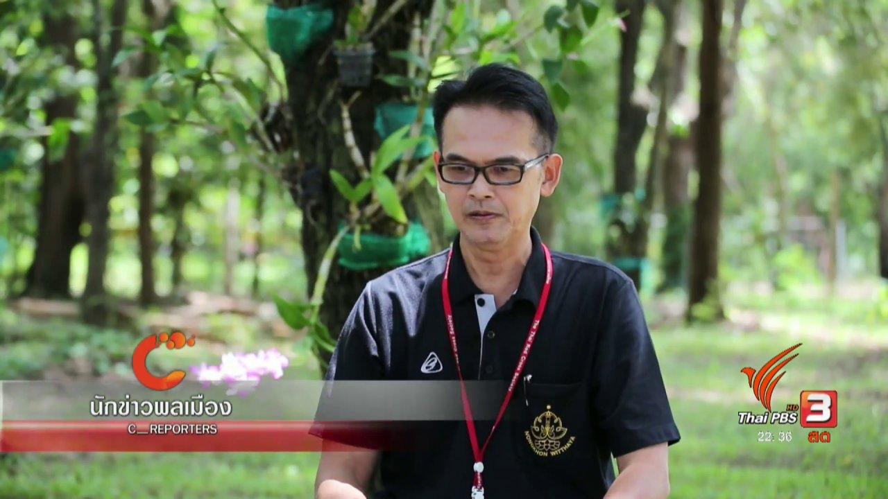 """ที่นี่ Thai PBS - นักข่าวพลเมือง : รณรงค์ขับขี่ปลอดภัย""""15ปี เลิกขี่มอเตอร์ไซค์"""" จ.อุบลราชธานี"""
