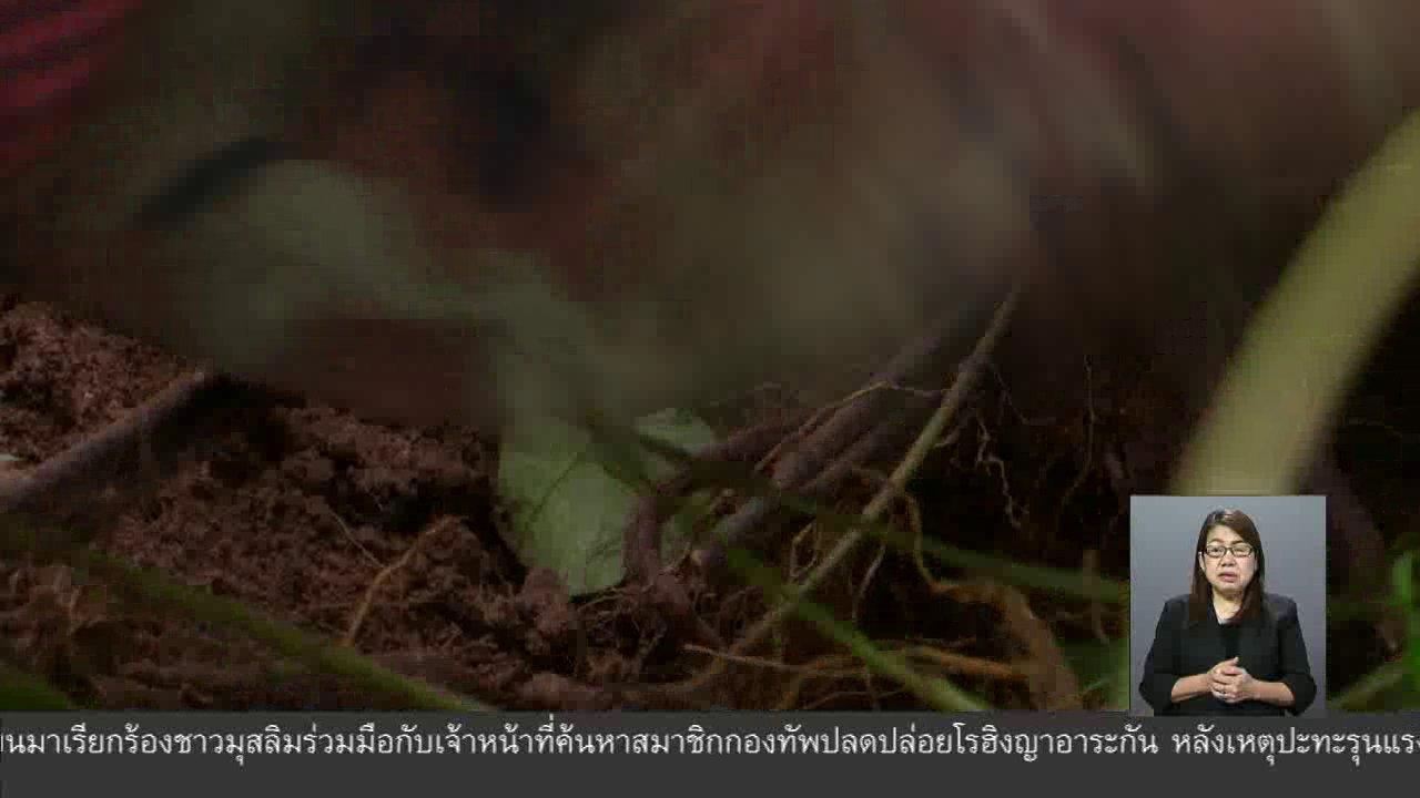 จับตาสถานการณ์ - ตะลุยทั่วไทย : ขนมตดหมา
