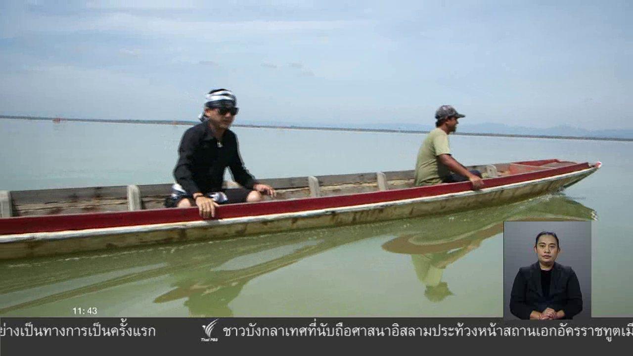 จับตาสถานการณ์ - ตะลุยทั่วไทย : ปลาหมี่หลัง