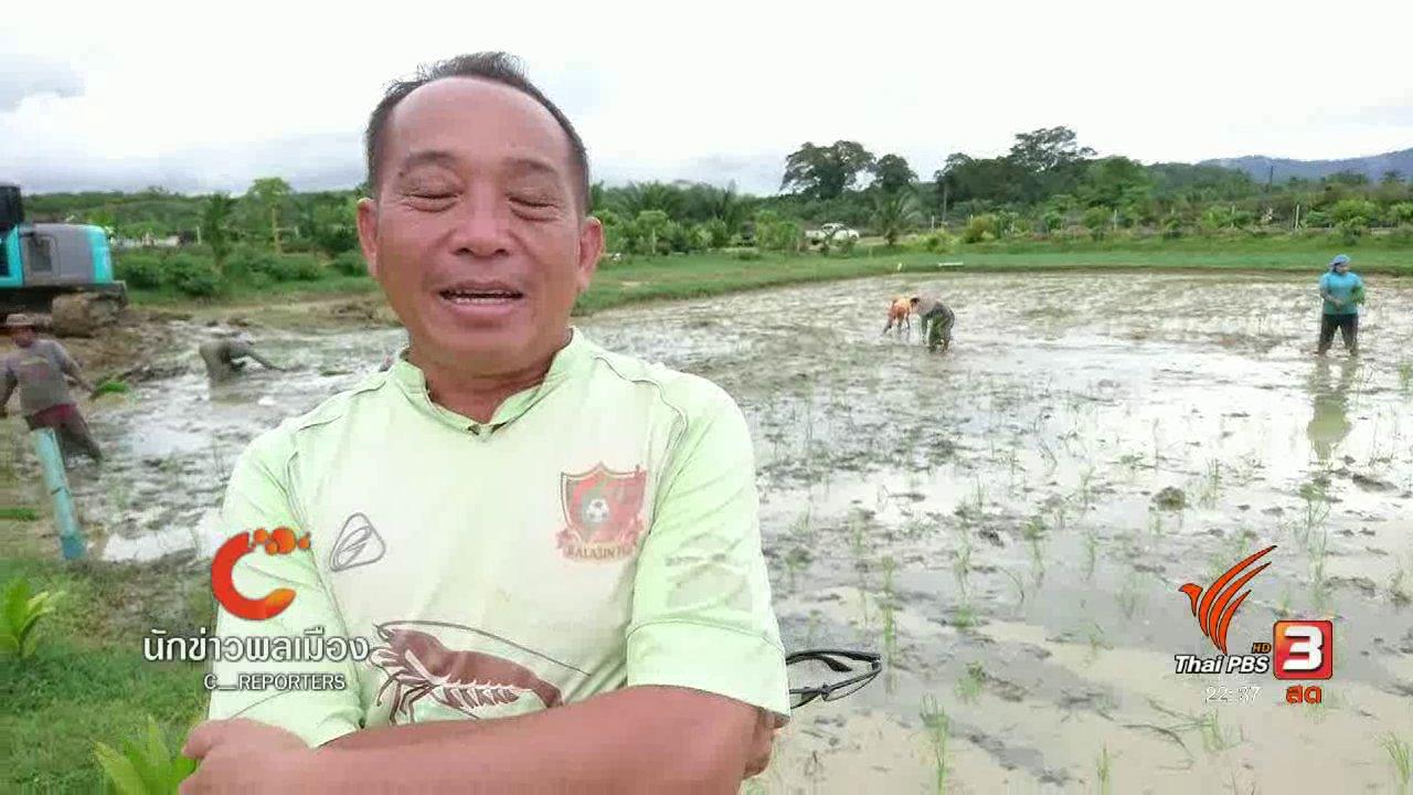 ที่นี่ Thai PBS - นักข่าวพลเมือง : เกษตรกร จ. ระนอง