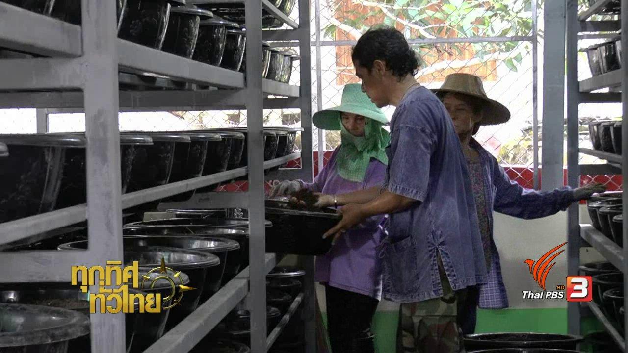 ทุกทิศทั่วไทย - ชุมชนทั่วไทย : ผลิตปุ๋ยอินทรีย์จากมูลไส้เดือน