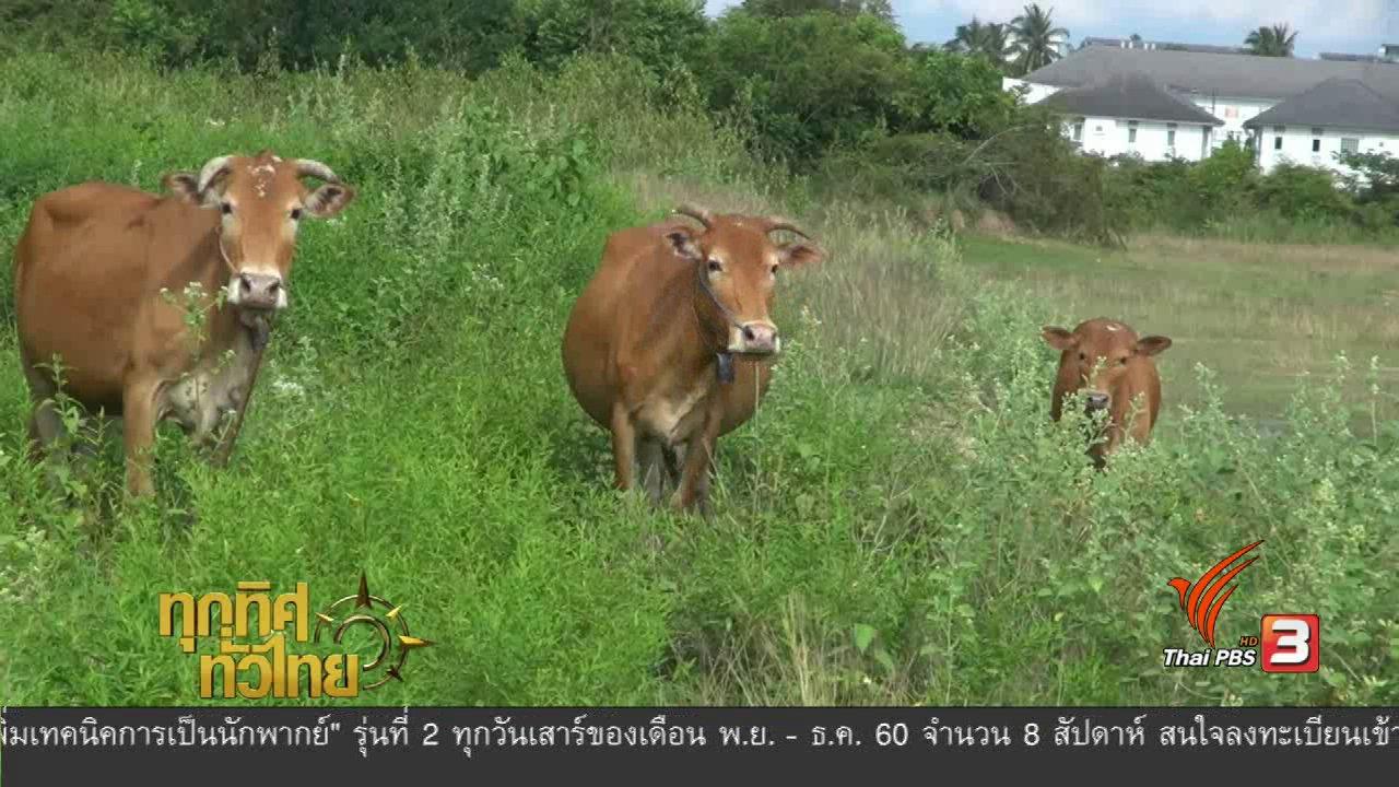ทุกทิศทั่วไทย - อาชีพทั่วไทย : ข้าราชการตำรวจ น้อมนำปรัชญาเศรษฐกิจพอเพียงมาปรับใช้