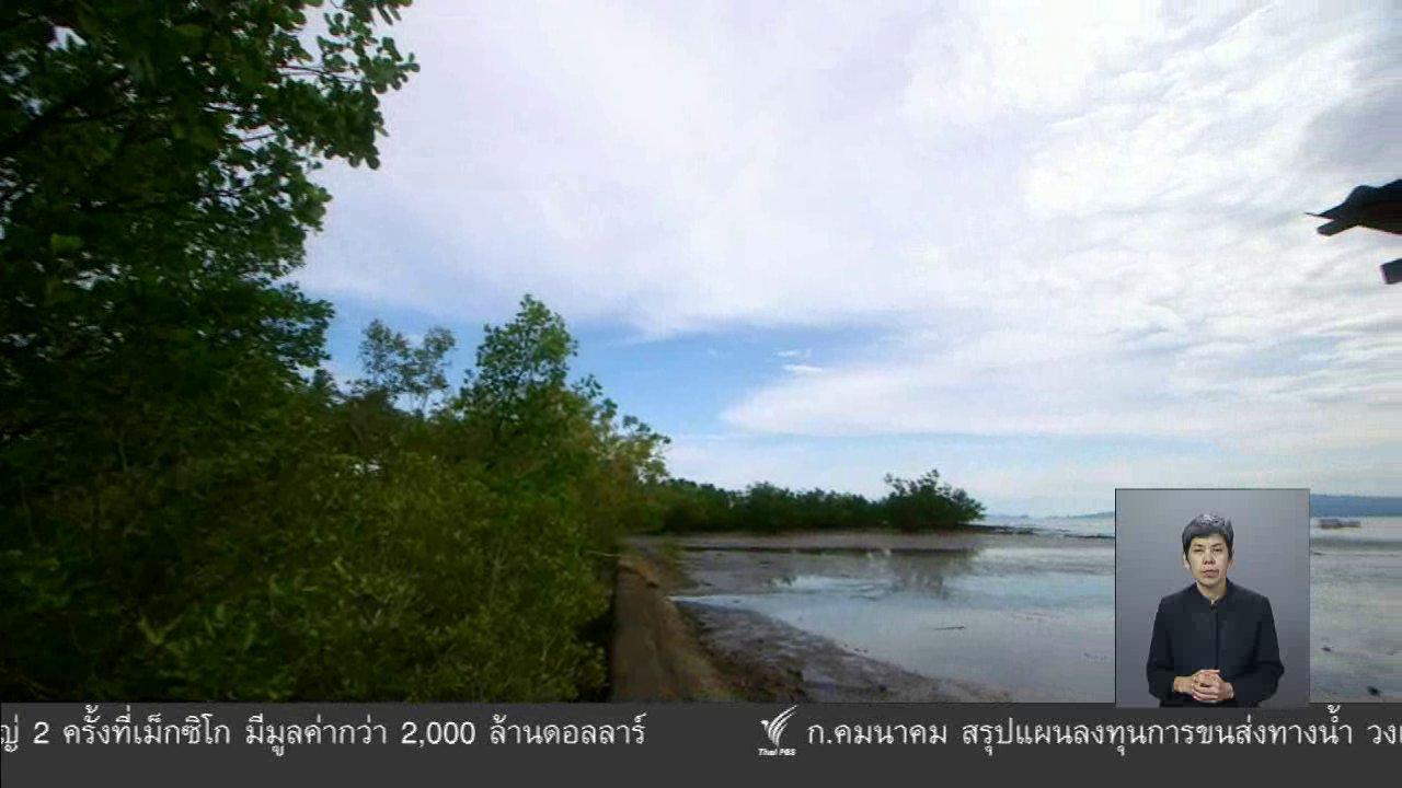 จับตาสถานการณ์ - ตะลุยทั่วไทย : ปลิงขาว