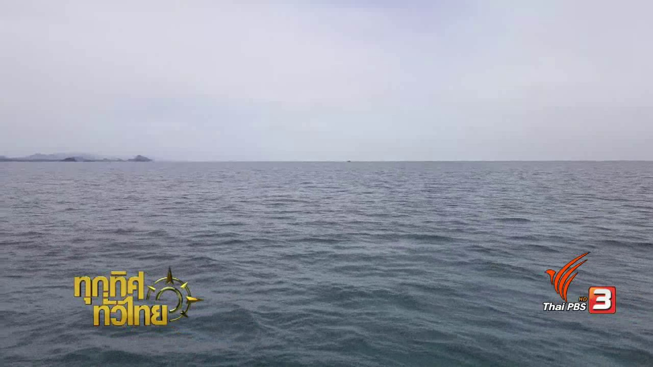 """ทุกทิศทั่วไทย - ชุมชนทั่วไทย : """"ซั้งกอ"""" แหล่งหลบภัยสัตว์ทะเล"""