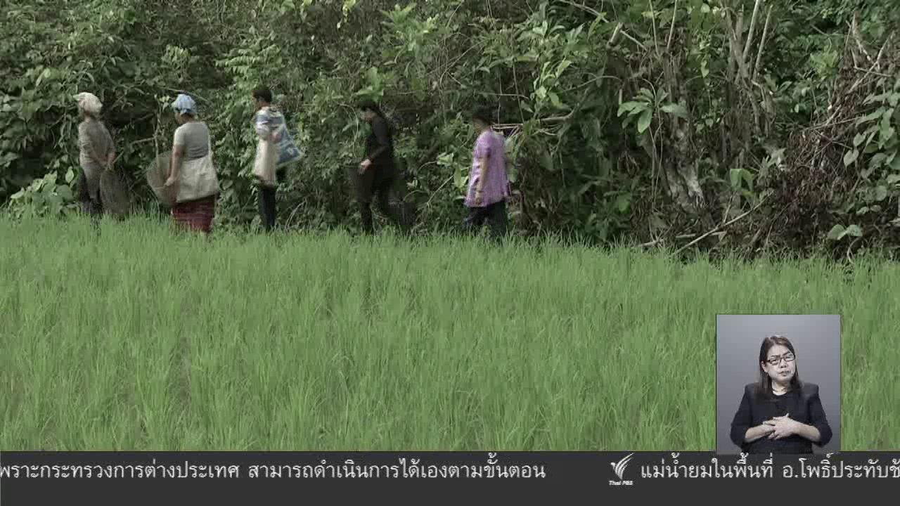 จับตาสถานการณ์ - ตะลุยทั่วไทย : แกงปลาใส่ถั่วเน่า