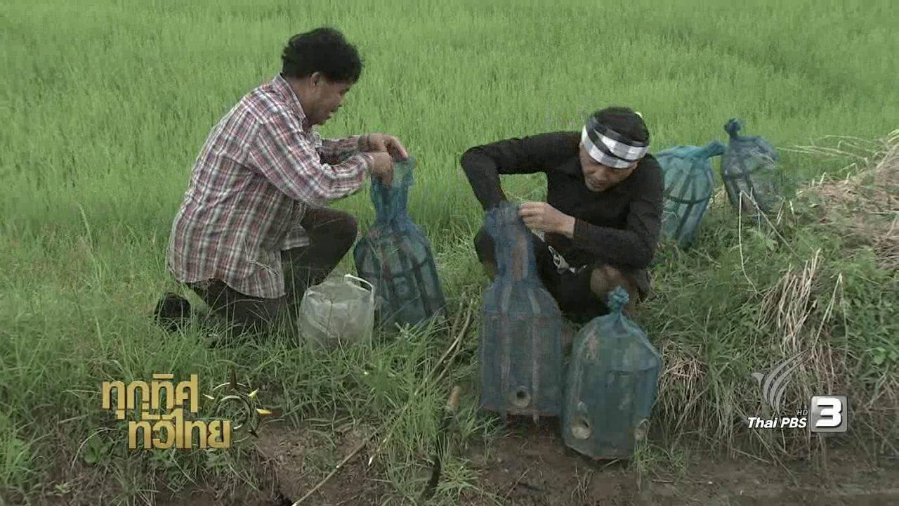 """ทุกทิศทั่วไทย - วิถีทั่วไทย : """"อีจู้"""" จับสัตว์น้ำ"""