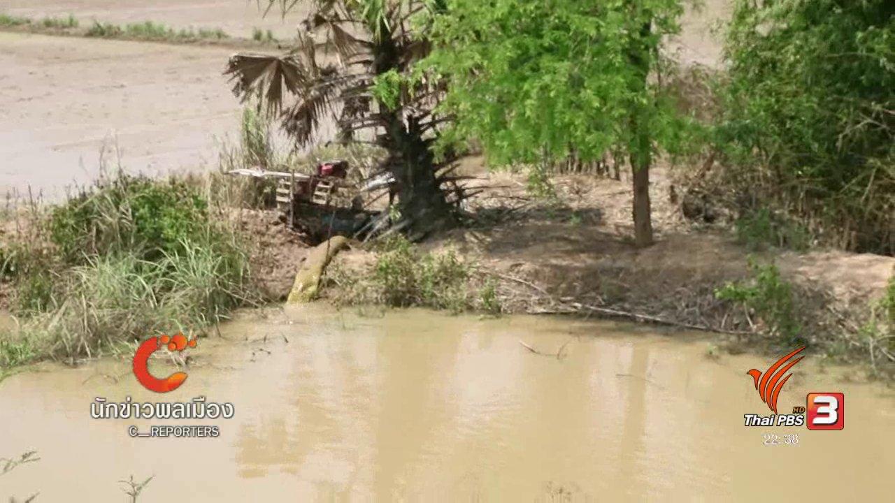 ที่นี่ Thai PBS - นักข่าวพลเมือง : ชาวนาสุโขทัย ขอสนามบิน เปิดทางระบายน้ำ