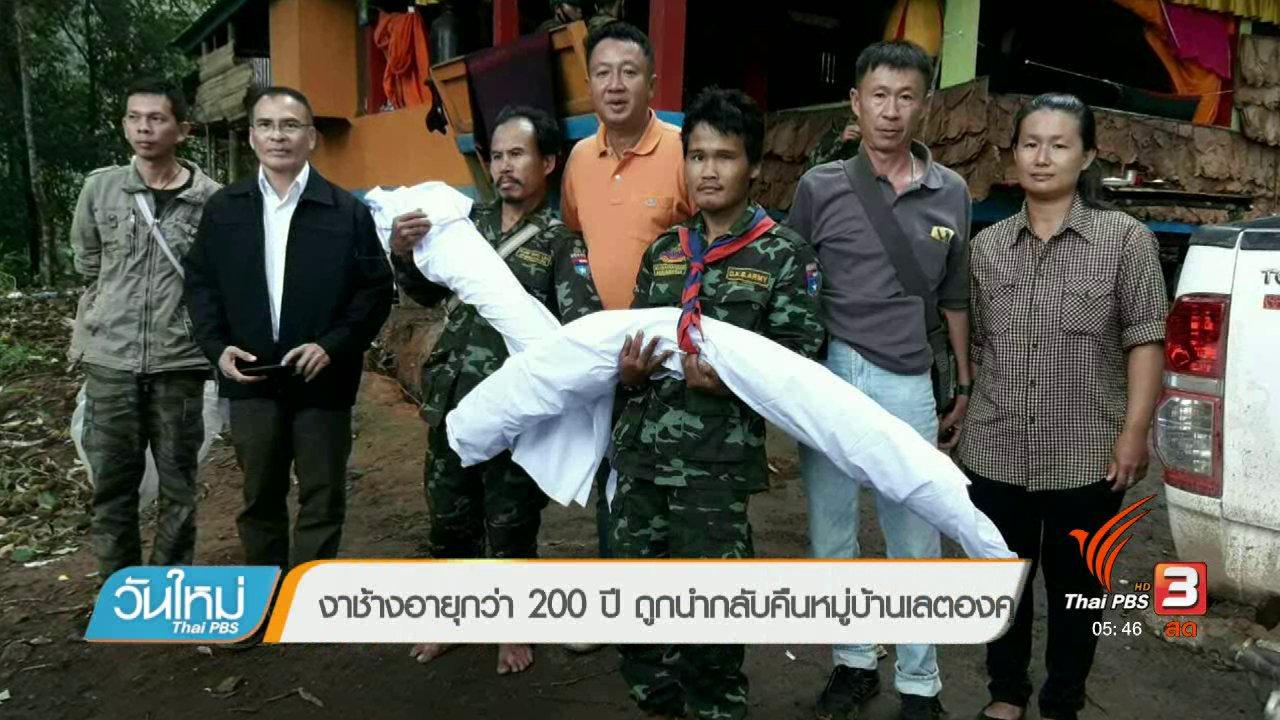 วันใหม่  ไทยพีบีเอส - งาช้างอายุกว่า 200 ปี ถูกนำกลับคืนหมู่บ้านเลตองคุ
