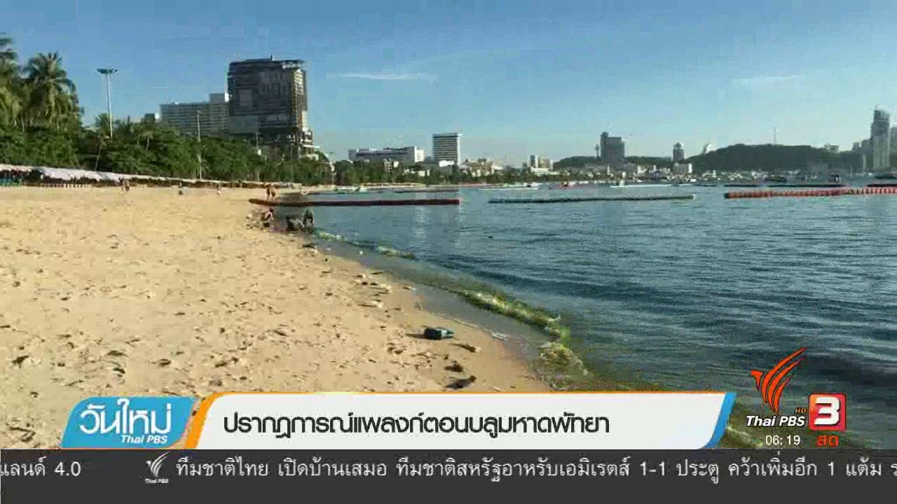 วันใหม่  ไทยพีบีเอส - ปรากฏการณ์แพลงก์ตอนบลูมหาดพัทยา