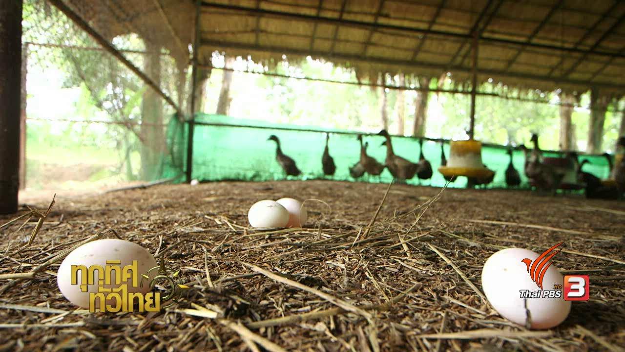ทุกทิศทั่วไทย - จุฑามาศ พาตะลุย : ไส้กรอกไข่เค็ม