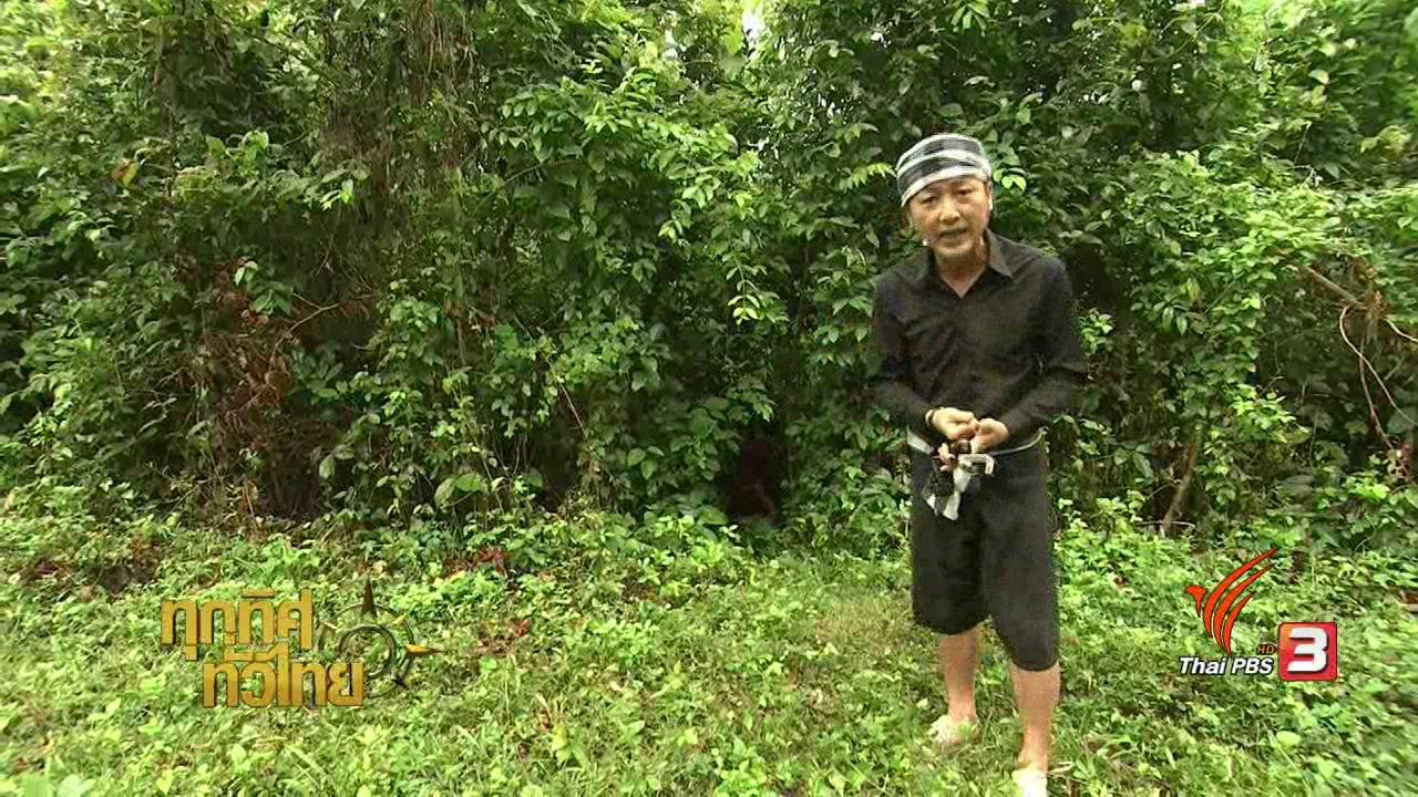 ทุกทิศทั่วไทย - วิถีทั่วไทย : หลามไก่