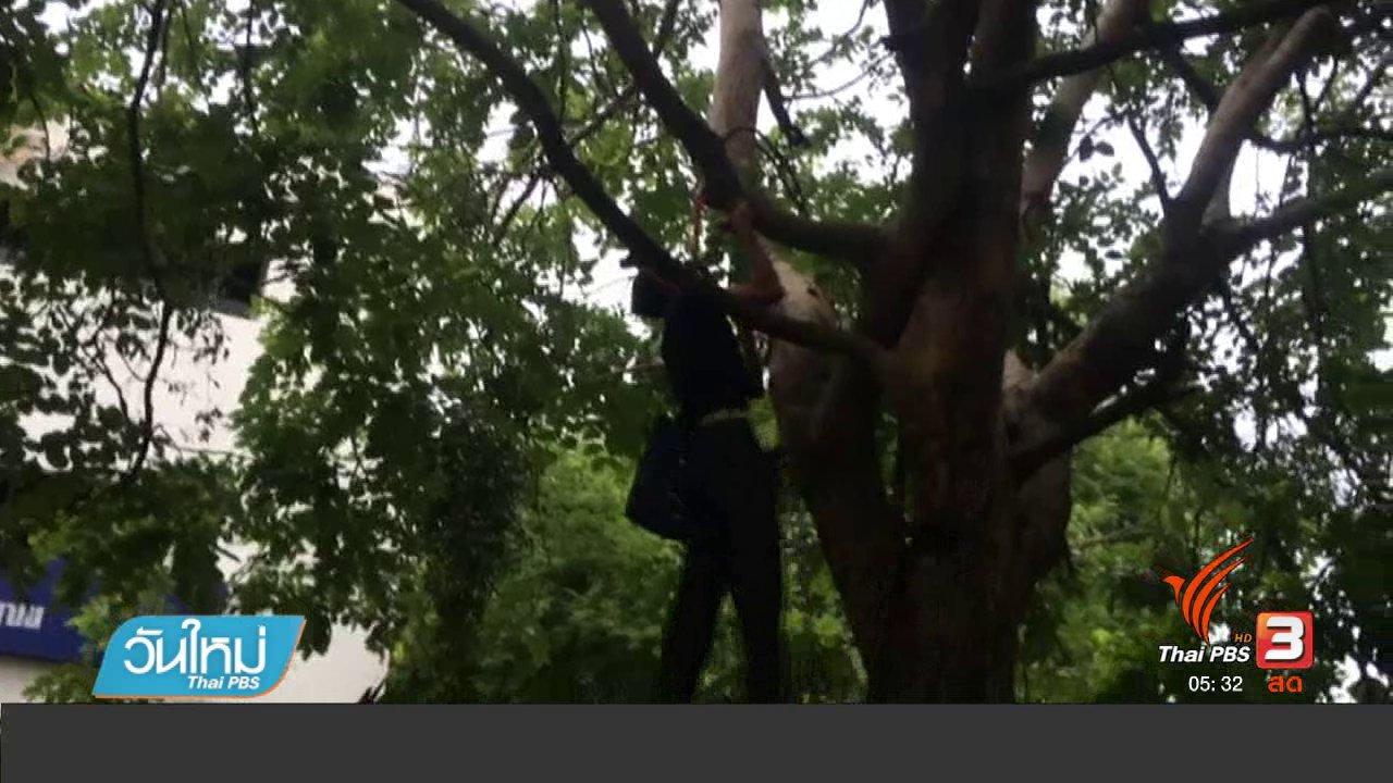 วันใหม่  ไทยพีบีเอส - ช่วยชาย 70 ปีผูกคอต้นไม้ฝั่ง ก.พ.เครียดถูกยึดที่ดิน