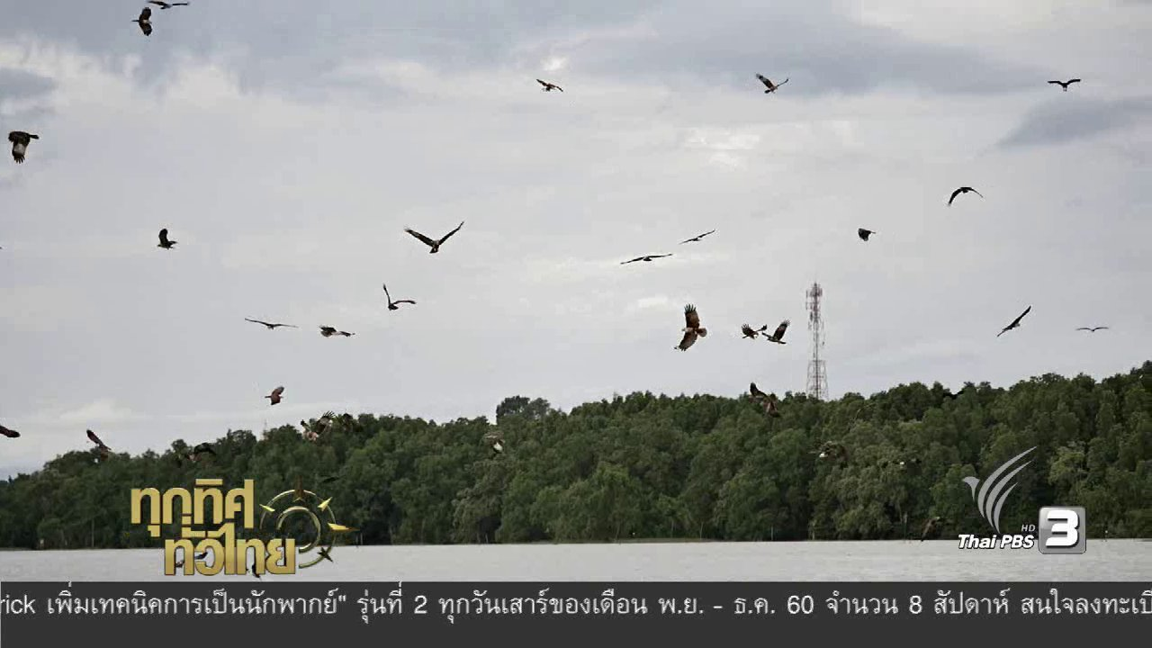 """ทุกทิศทั่วไทย - ชุมชนทั่วไทย : แหล่งท่องเที่ยวทางธรรมชาติ """"บ้านเสม็ดงาม"""""""