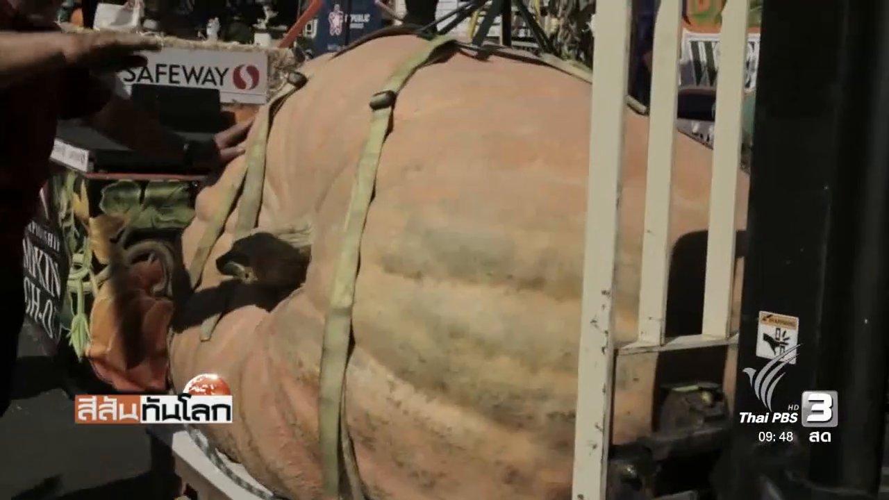 สีสันทันโลก - ฟักทองยักษ์น้ำหนักกว่า 1 ตัน สร้างสถิติใหม่