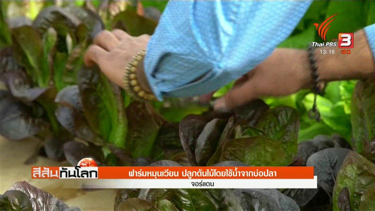 สีสันทันโลก - ฟาร์มหมุนเวียน ปลูกต้นไม้โดยใช้น้ำจากบ่อปลา