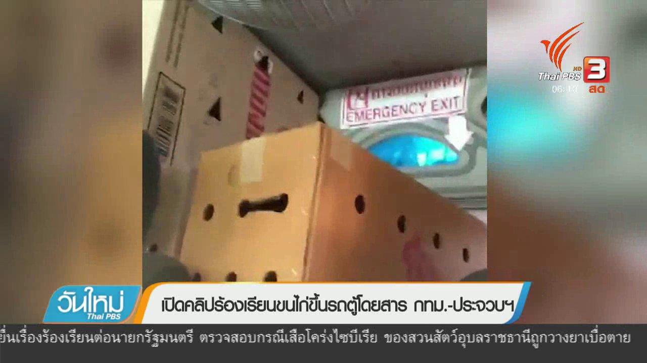 วันใหม่  ไทยพีบีเอส - เปิดคลิปร้องเรียนขนไก่ขึ้นรถตู้โดยสาร กทม. – ประจวบฯ