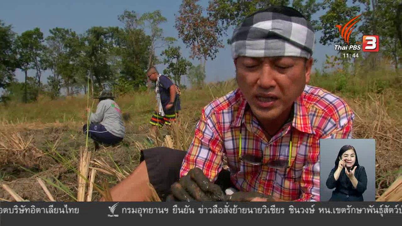 จับตาสถานการณ์ - ตะลุยทั่วไทย : น้ำยาขนมจีนปูนา