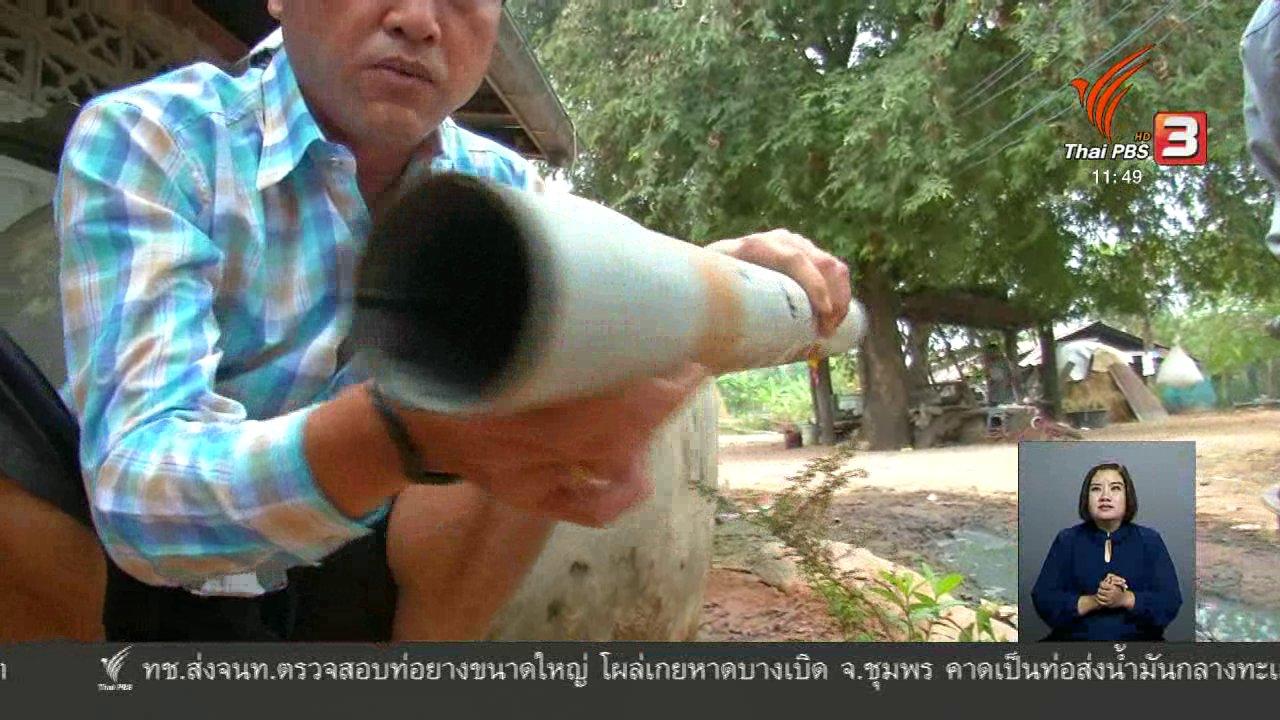 จับตาสถานการณ์ - ตะลุยทั่วไทย : ผัดเผ็ดคางคก