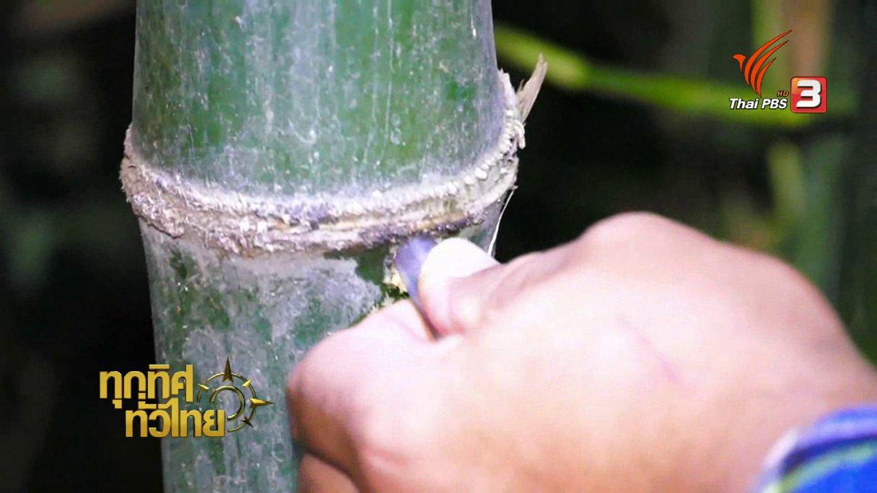 ทุกทิศทั่วไทย - เกษตรสิงห์บุรีทำน้ำจากต้นไผ่สร้างรายได้เพิ่ม