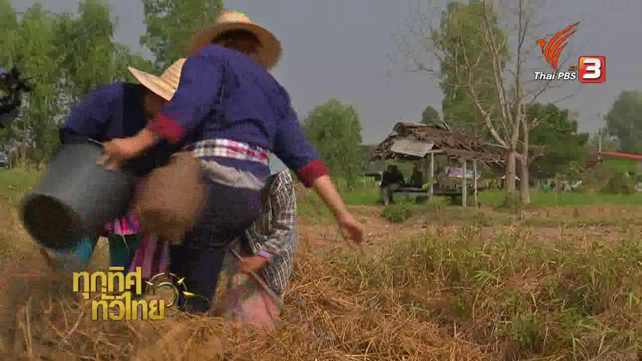 ทุกทิศทั่วไทย - วิถีทั่วไทย : หลากเมนูแซ่บ ๆ จากปูนา
