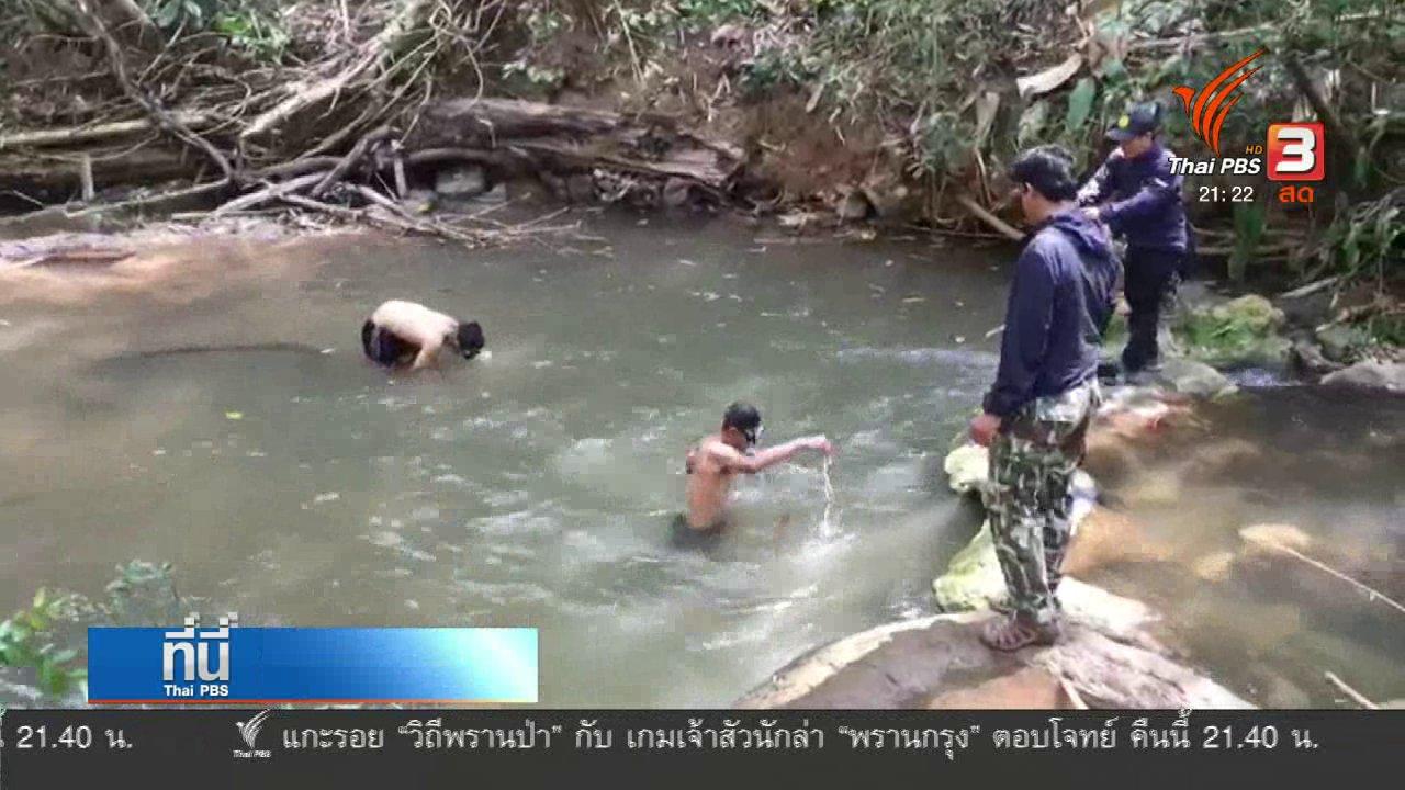 ที่นี่ Thai PBS - หลักฐานคดีล่าสัตว์ ป่าทุ่งใหญ่ฯ