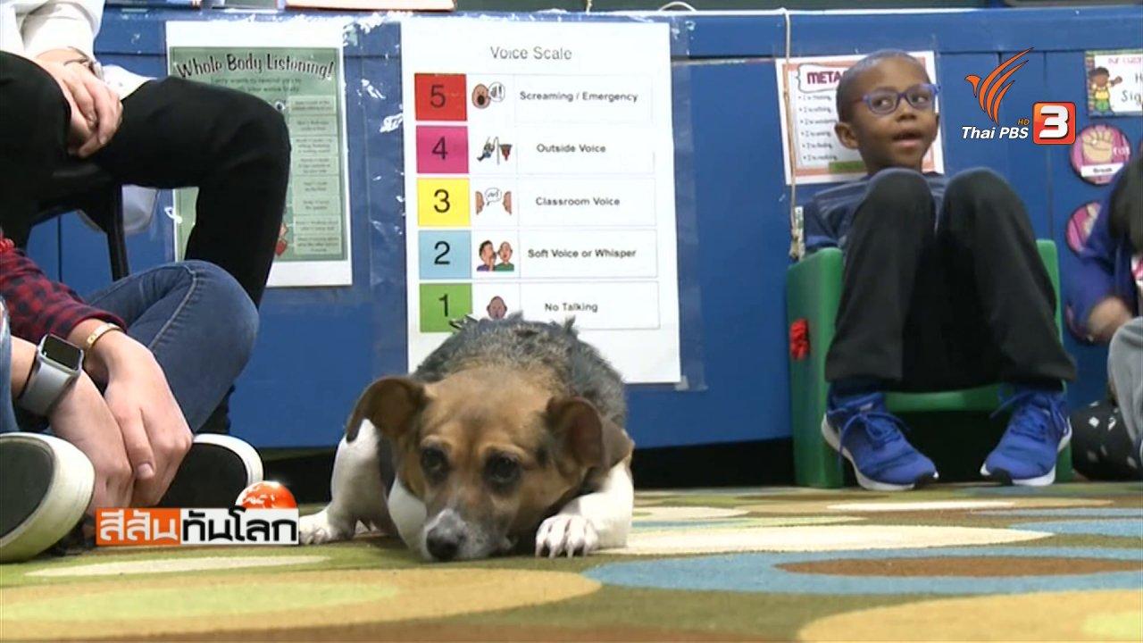 สีสันทันโลก - สุนัขช่วยสอนนักเรียน