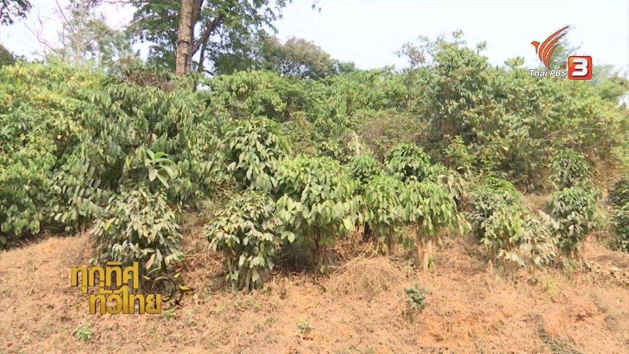 ทุกทิศทั่วไทย - ชุมชนทั่วไทย: เยือนชุมชนต้นแบบคนอยู่กับป่าห้วยปลาหลด