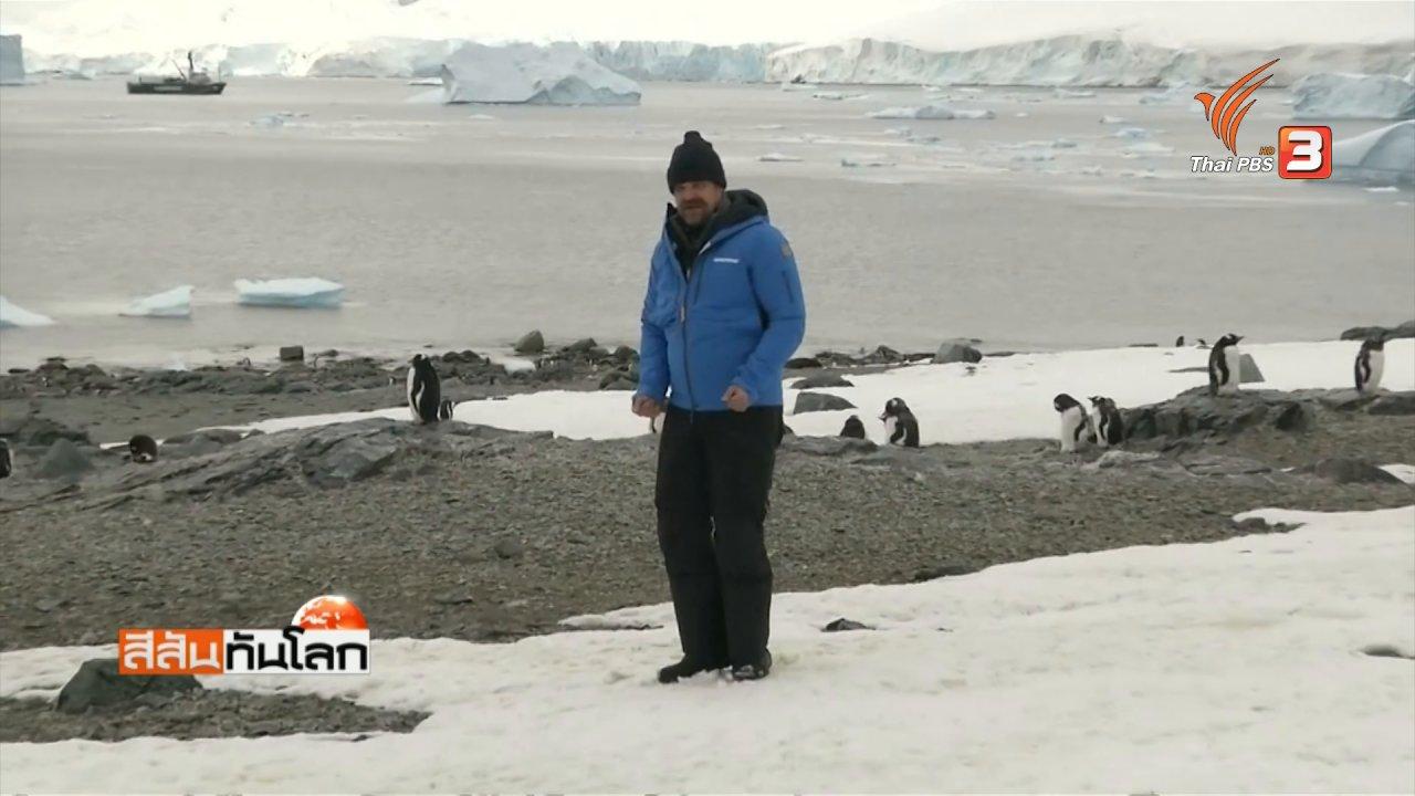 สีสันทันโลก - เต้นรำกับเพนกวิน