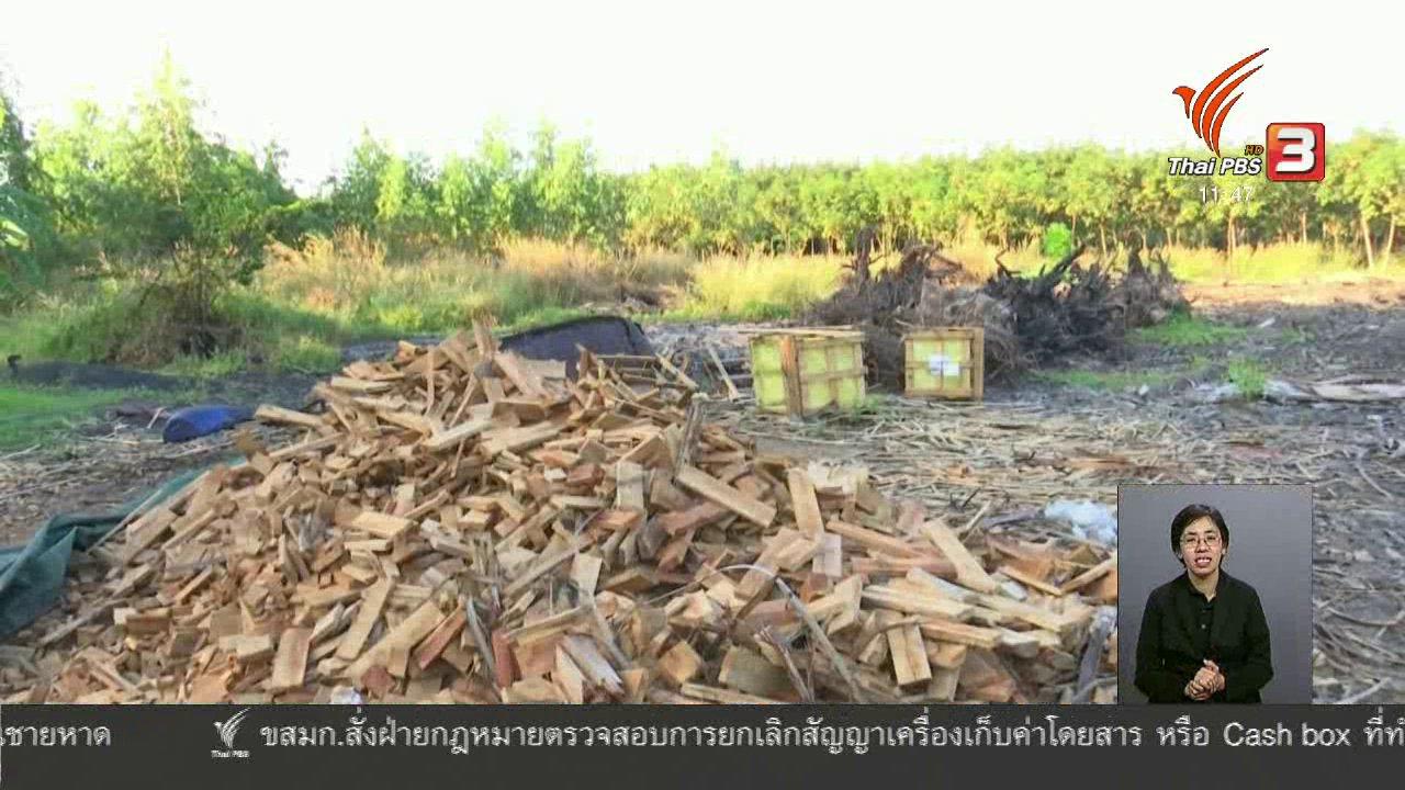 จับตาสถานการณ์ - ตะลุยทั่วไทย : เผาถ่านควันน้อย