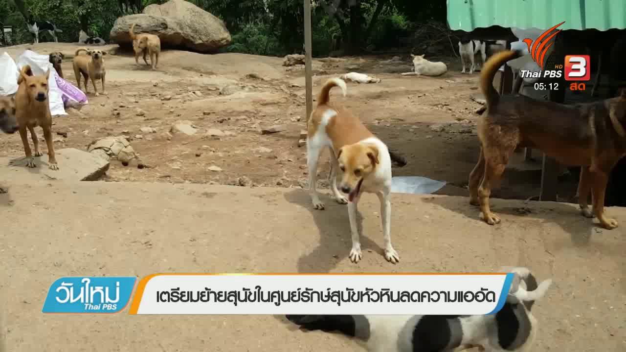 วันใหม่  ไทยพีบีเอส - เตรียมย้ายสุนัขในศูนย์รักษ์สุนัขหัวหินลดความแออัด