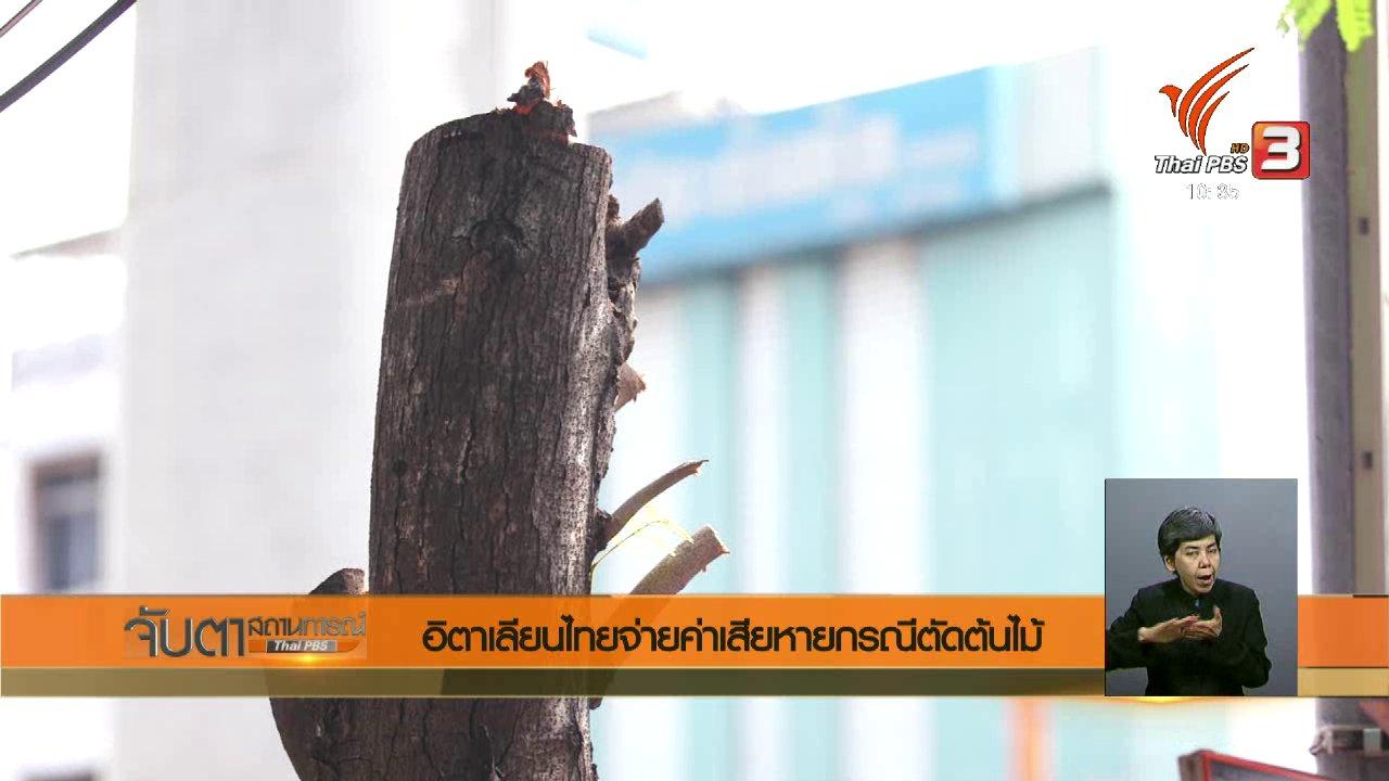 จับตาสถานการณ์ - อิตาเลียนไทยจ่ายค่าเสียหายกรณีตัดต้นไม้