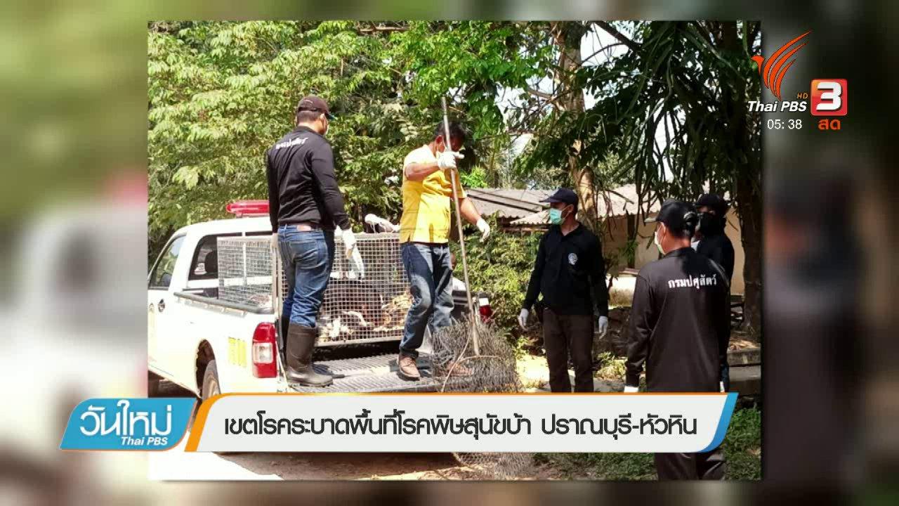 วันใหม่  ไทยพีบีเอส - เขตโรคระบาดพื้นที่โรคพิษสุนัขบ้า ปราจีนบุรี – หัวหิน