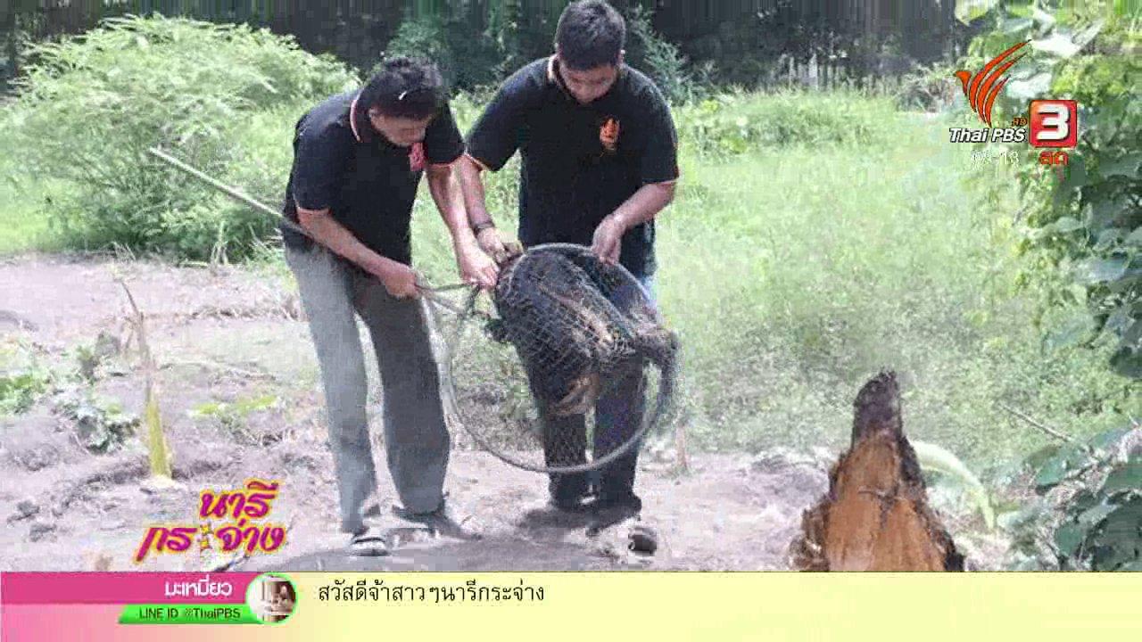 """นารีกระจ่าง - นารีสนทนา : พูดคุย """"หมออาสา"""" ฝ่าวิกฤติช่วยสัตว์จรจัดพ้นพิษสุนัขบ้า"""