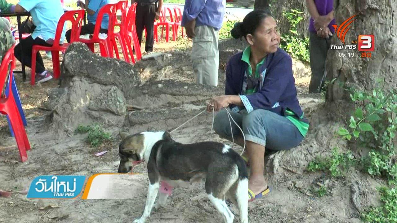 วันใหม่  ไทยพีบีเอส - ด.ญ.เสียชีวิตด้วยโรคพิษสุนัขบ้ารายที่ 6 จ.บุรีรัมย์