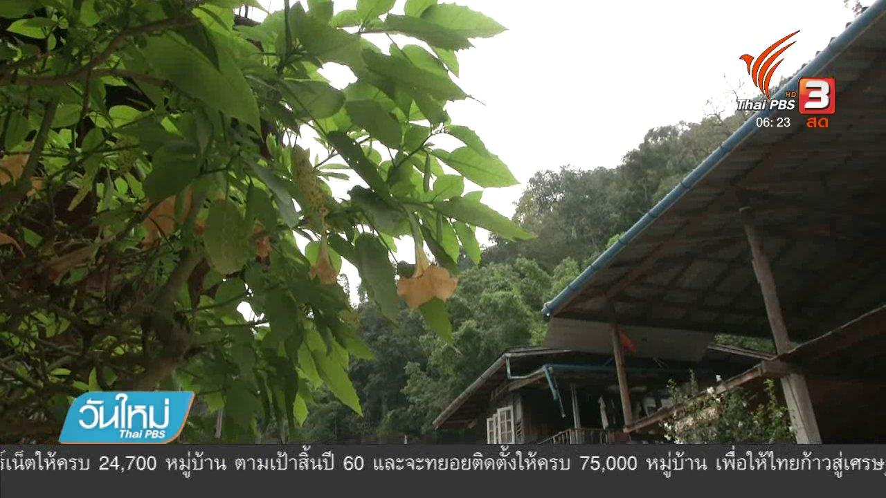 วันใหม่  ไทยพีบีเอส - บ้านแม่กำปองเตรียมรับนักท่องเที่ยว