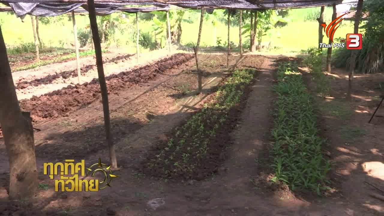 ทุกทิศทั่วไทย - จุฑามาศ พาตะลุย : ร่วมมือกันฟื้นฟูพื้นที่รกร้าง