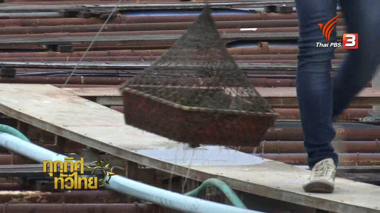 ทุกทิศทั่วไทย - อาชีพทั่วไทย : เพาะเลี้ยงหอยมุกน้ำจืด