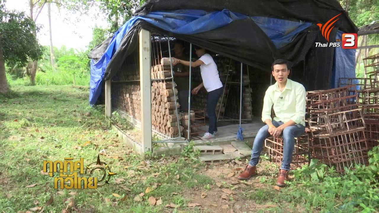 ทุกทิศทั่วไทย - อาชีพทั่วไทย : แปรรูปเห็ดหลินจือและถั่งเช่า