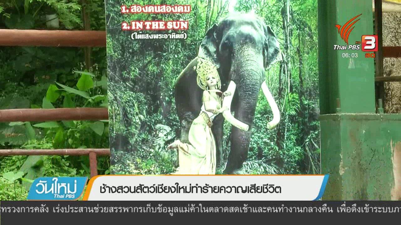 วันใหม่  ไทยพีบีเอส - ช้างสวนสัตว์เชียงใหม่ทำร้ายควาญเสียชีวิต
