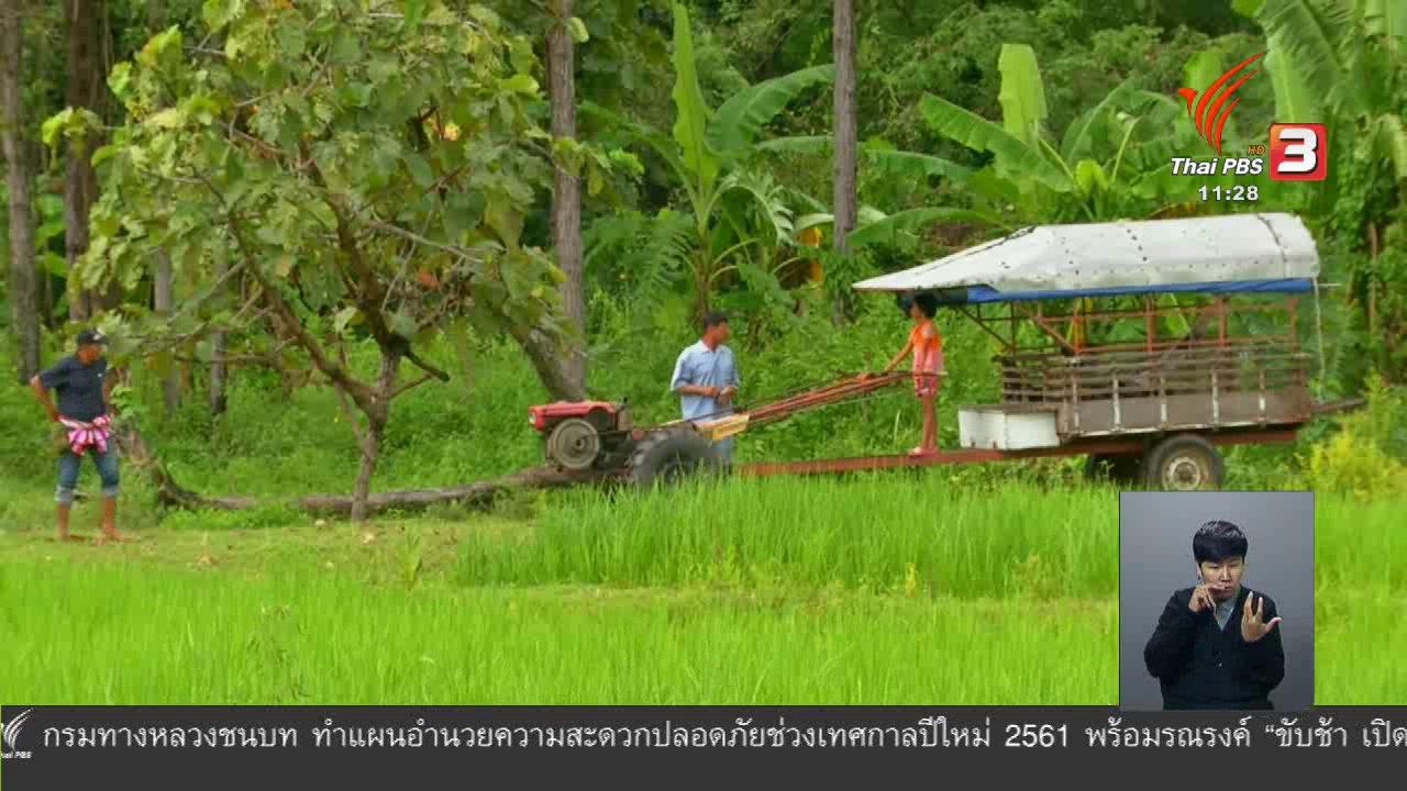 จับตาสถานการณ์ - ตะลุยทั่วไทย : ดักต่ง